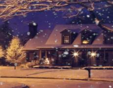 El espíritu de la Navidad no caduca, mucho menos con Árboles de Navidad